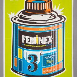 Feminex Poster