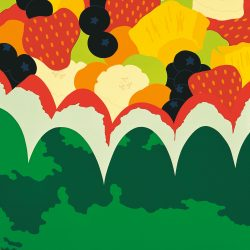 Fruit Salad Picnic Poster